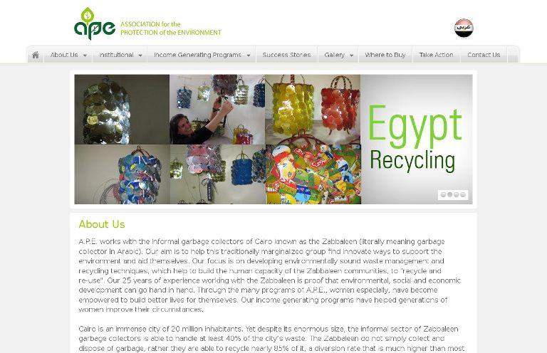 APE_website