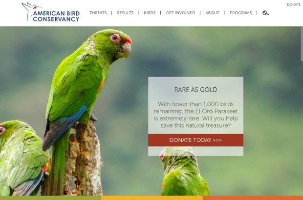 American Bird Conservancy_homepage