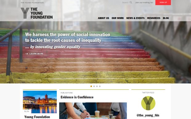 The Young Foundation_homepage